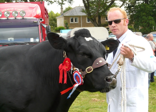 Solway View Black Beauty wins Cockermouth Show